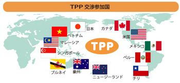 TPP10-23.jpg